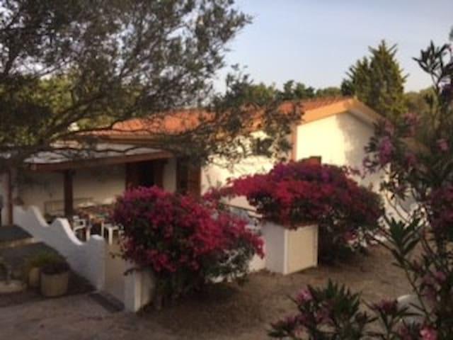 Casa Teresa, Porto Pino, via Porto Pineddu 12 - Sant'Anna arresi - Casa