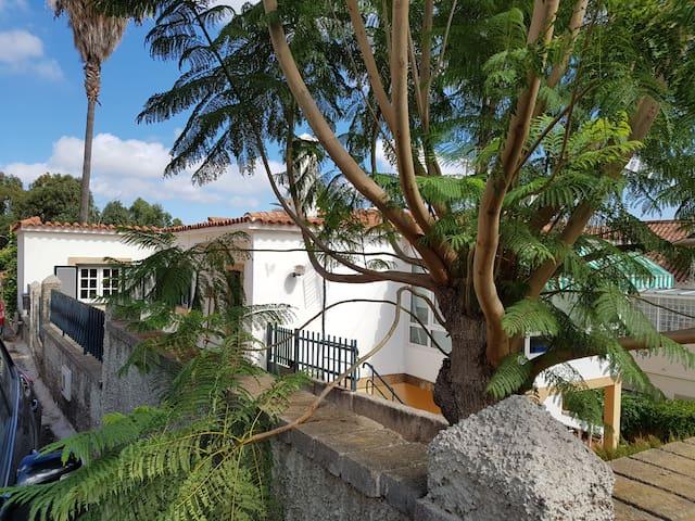 La casita de Cocó - Santa Brígida