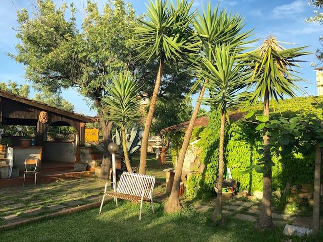 The English Garden Lamezia Terme - Lamezia Terme - Appartement