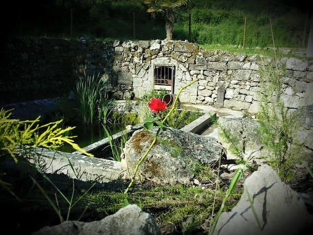 Mon petit coin de paradis vous est ouvert ..... - Clairac - Huis