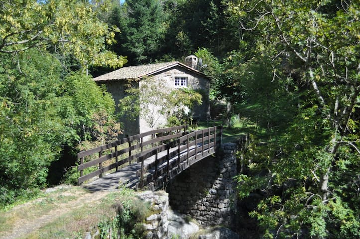 Charming Room in ancient mill close to the river. - Albon-d'Ardèche - Apartemen
