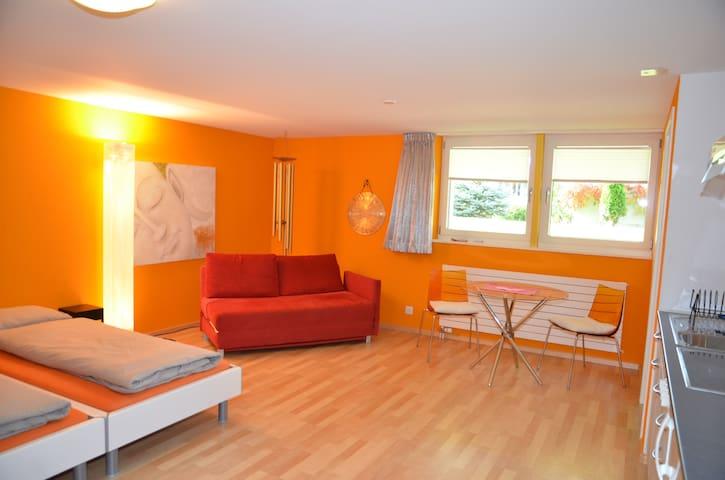 Wunderschönes Studio mit eigenem Eingang - Dornach - Departamento