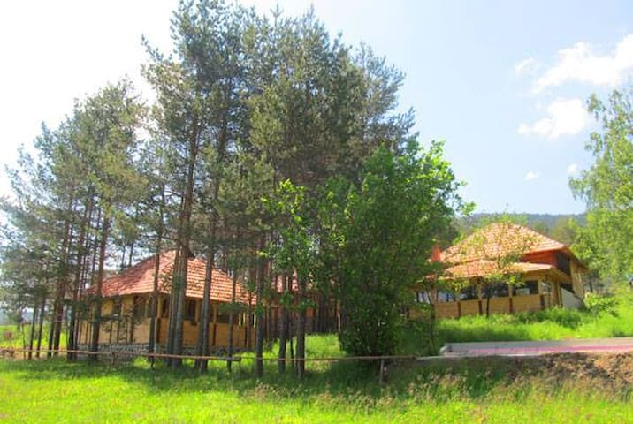 Mountain bungalow in pure nature - Zlatibor