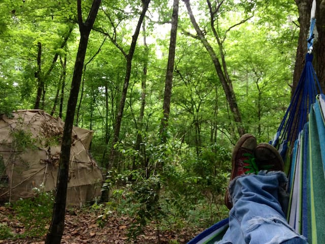 Primitive waterfront camping - Middleburg