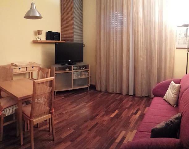 cosy and comfortable apartment - Brugherio - Lägenhet