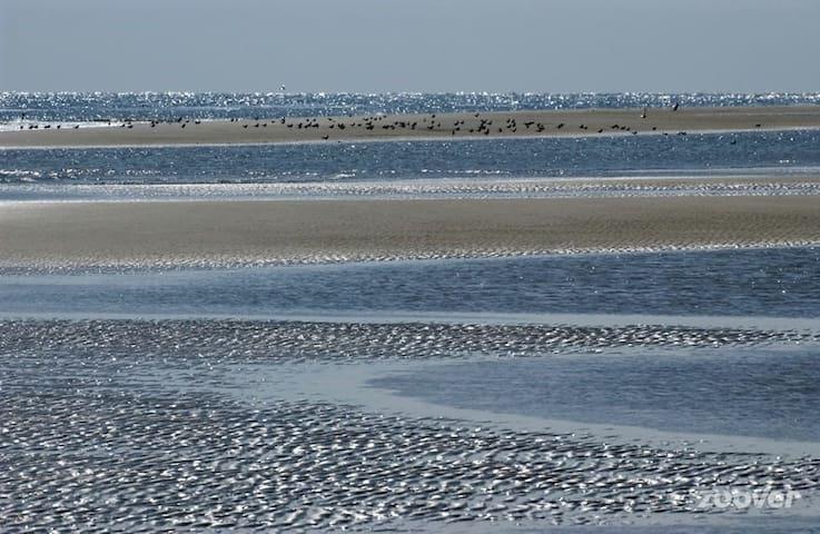 Dream place on the dunes - Cadzand
