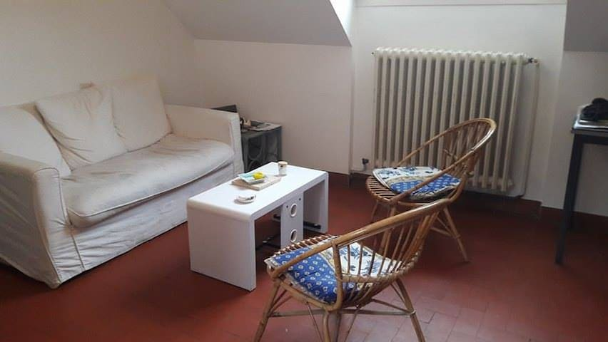 Appartement hypercentre d'Angers - Angers - Wohnung
