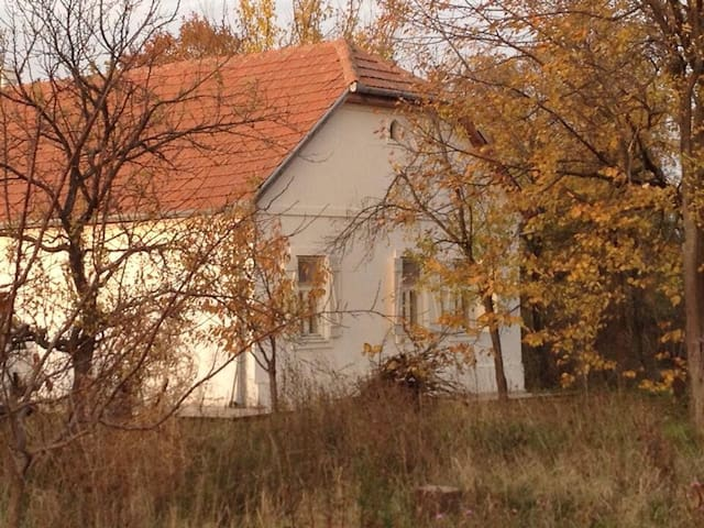 Farmhouse - Sombor - Bed & Breakfast