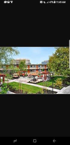 Apartment in Down Town Walnut Creek - Walnut Creek - Appartamento