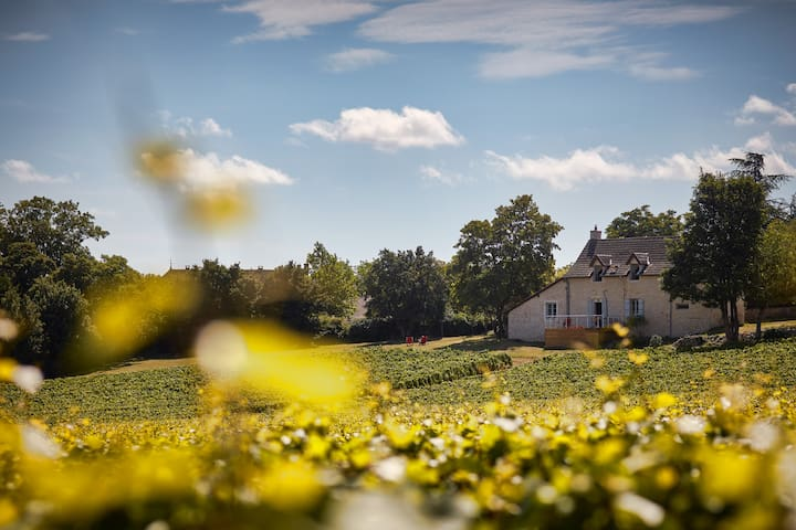 Your House in the Heart of the Vineyards - Mercurey - Huis