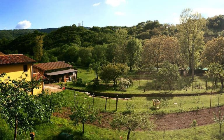 Fattoria Bio Mulino La Vallina - Quero - Leilighet