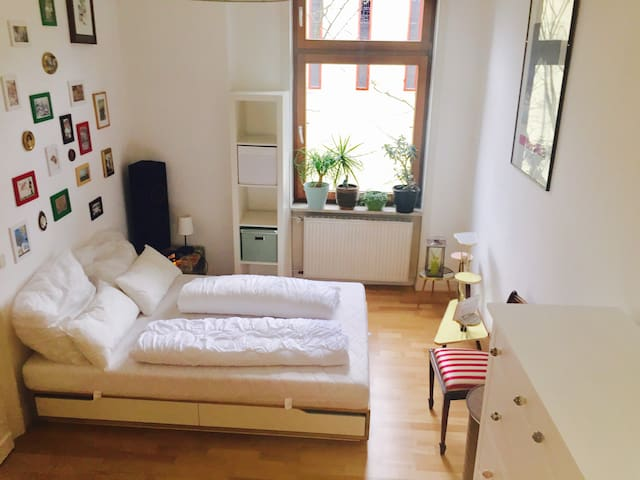 Comfy& Exotic Apartment, great convenient location - Висбаден - Квартира