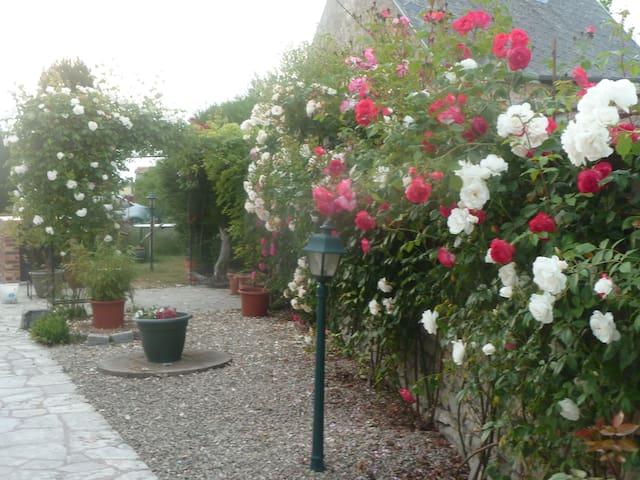 chambres en pleine nature au calme - Fresnay-l'Évêque - Bed & Breakfast