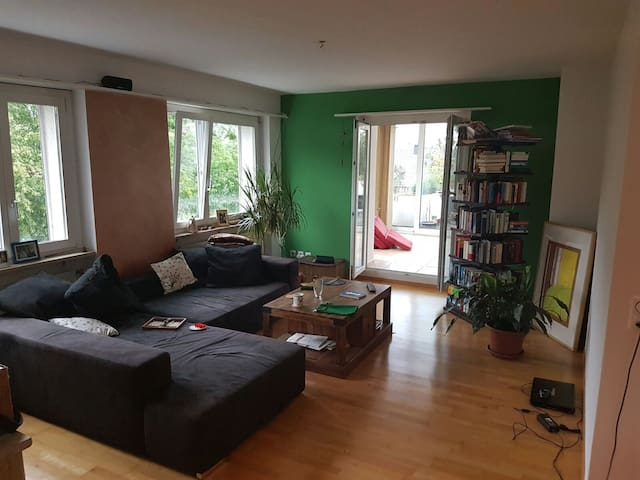flat surrounded by greenery with a great view - Berikon - Appartement