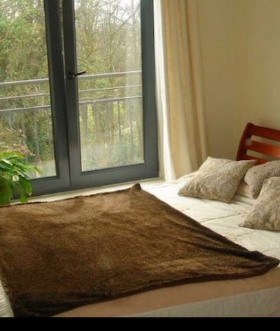 Lovely double room in large apt - Dublin - Lägenhet
