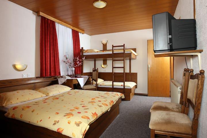 Private quad room*** 1 . , free parking, free wifi - Medvode - Pousada