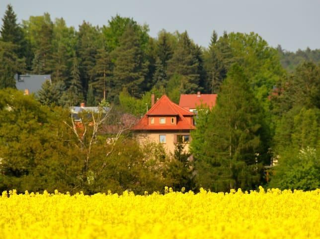 Ferienwohnung Deutschmann - Dahlen - Apartamento