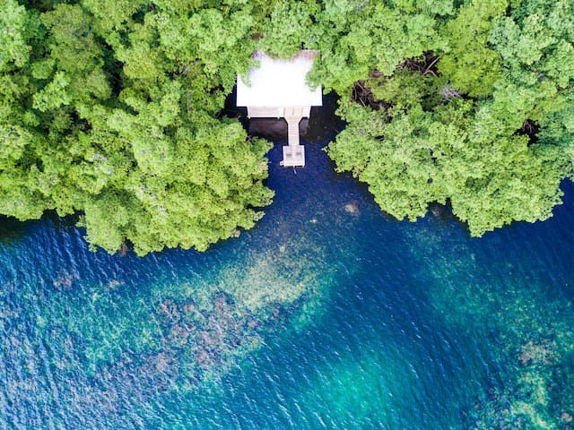 Dreamy Waterfront Treehouse on Blue Lagoon - Provincia de Bocas del Toro - Ház