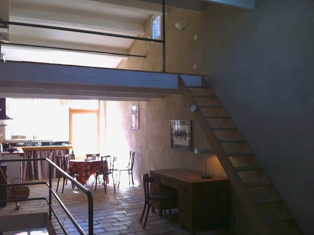maison atypique, grand séjour avec  terrasse  . - Vic-le-Fesq - Hus