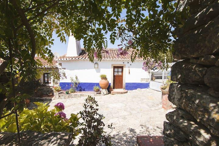 teacher's House - Guesthouse - Casais Monizes
