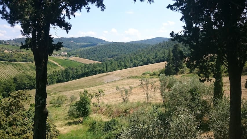 Tuscan hilltop paradise - La vista - San Martino Alla Palma - Apartamento