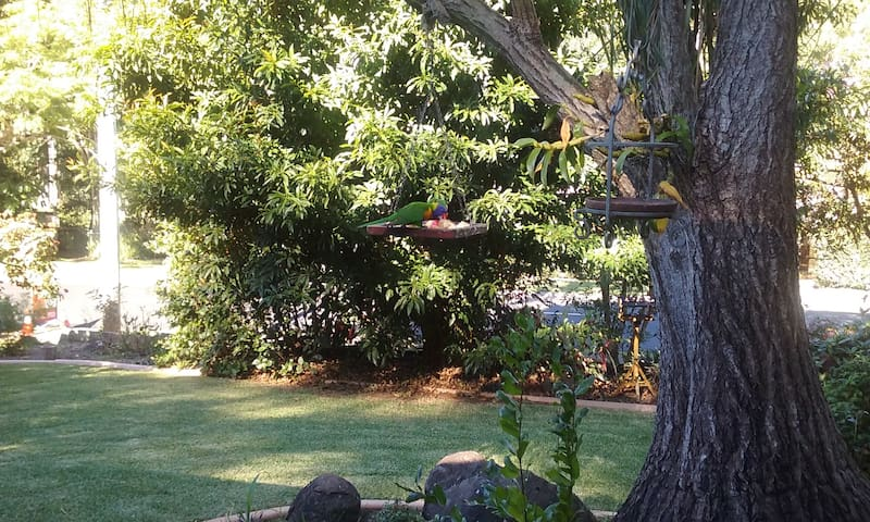 """""""Tree Tops""""  -  Self contained ground foor  flat - Buderim - Appartement"""