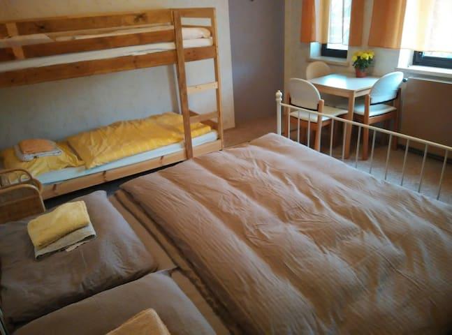 Rooms for 2-4 people, own garden, parking, Vienna - Gänserndorf - Hus