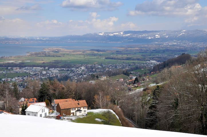 Ferienwohnung mit Bodenseeblick - Wolfhalden - 公寓