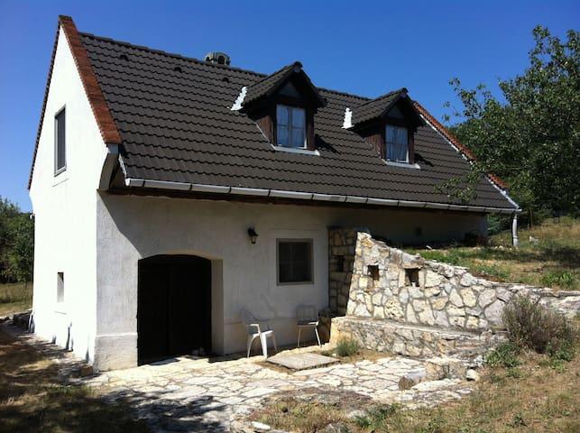 Quiet place at the Balaton - Balatonudvari - Hus