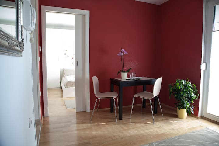 Sezana - charming and cozy with lots of open space - Sežana - Appartement
