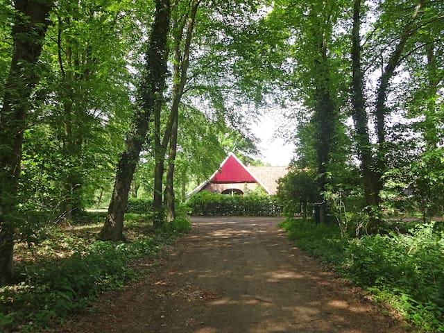 Tot rust komen in natuurgebied Bekendelle - Winterswijk Woold - Rumah