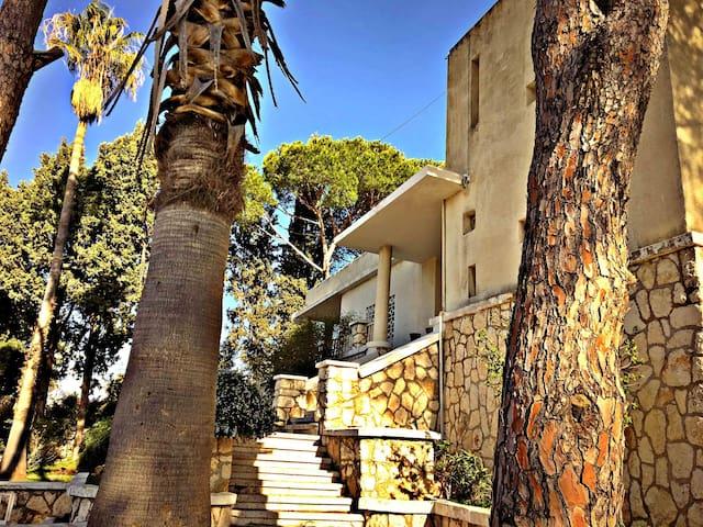 Casa De Amor - Mechref - Villa