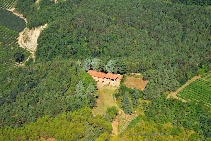 Vidovina: Forest Farmhouse Retreat - Casola Valsenio - 別荘