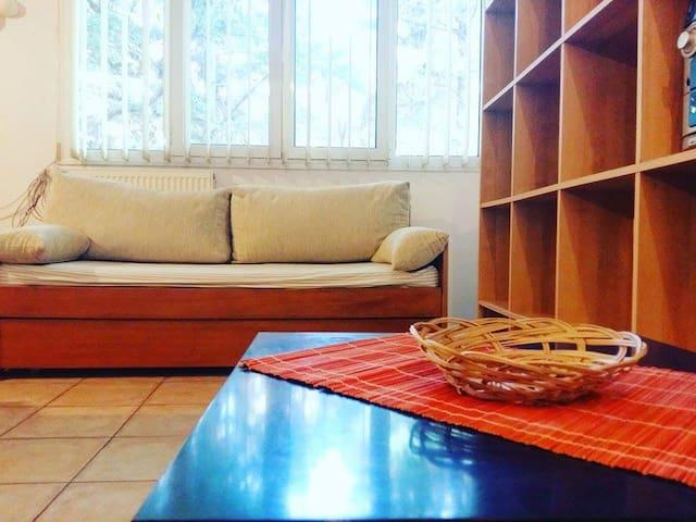 Quiet studio with garden access - Vólos - Leilighet