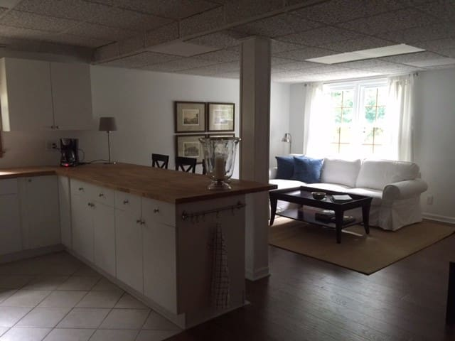 Entire  1 Br Apartment with Priv/entr. and Pool. - Lilburn - Leilighet