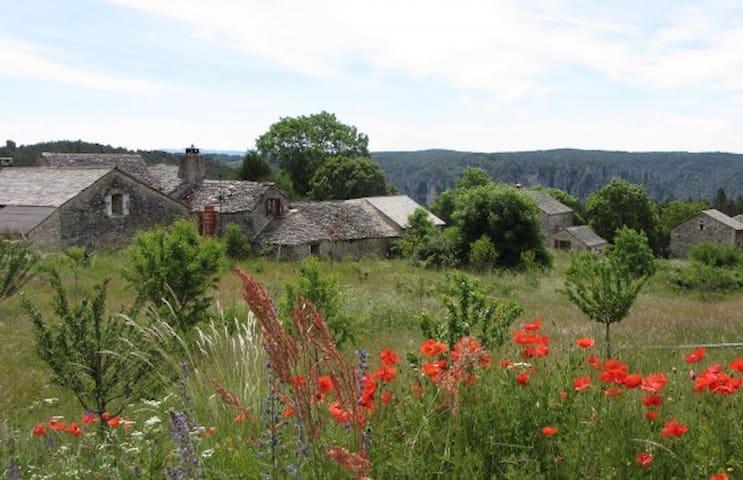 Maison caussenarde rénovée - Saint-Pierre-des-Tripiers - Casa