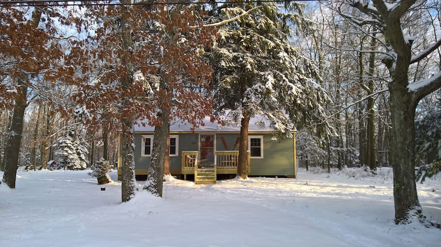 Twin Pines Cottage - White Haven - Cabaña