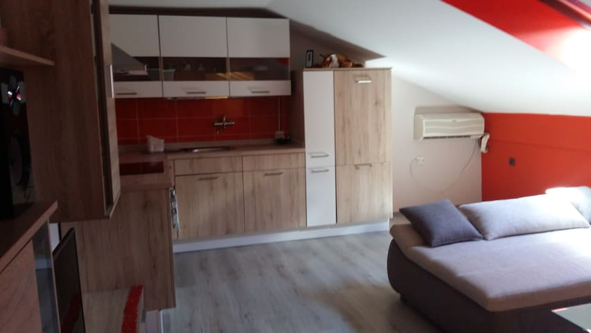 FRIENDLY HOME - Maribor - Appartement