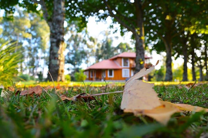 Casa em Caravaggio - Farroupilha - Cabaña