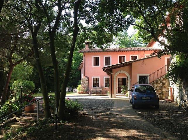 La casa tra gli alberi - Marostica - Casa