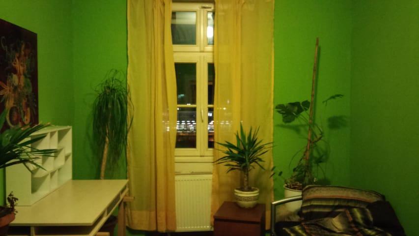 Schönes Altbauzimmer in zentraler Lage - Heidelberg - Huoneisto