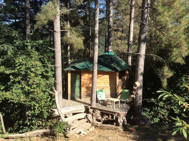 cabane dans les pins - Beaumont - Trädhus