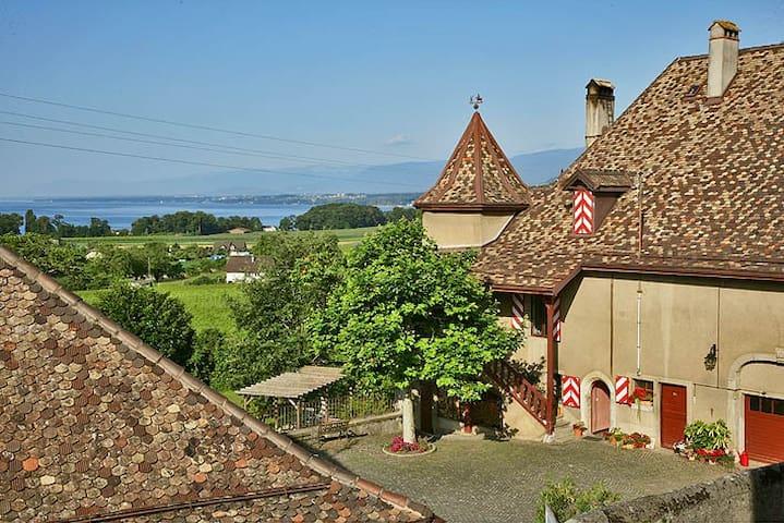 Une chambre vigneronne au Château! - Allaman - Castelo