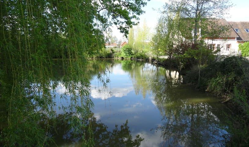 Au pays des chateaux de la Loire... - Prunay-Cassereau - Ev