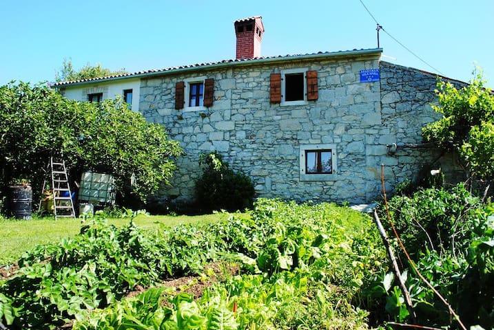 Villa Anka - Gracisce - Lägenhet