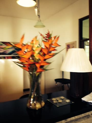 LA CASONA (BIG HOUSE) QUIET PLACE FOR RETREAT - San Marcos - 獨棟