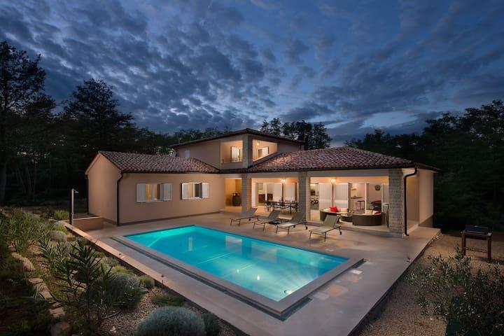 Istrian Villa Happy House - Labin - Villa