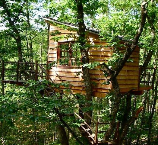 Cabane Les Arbres - Puycelsi - Houten huisje