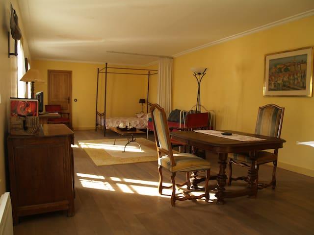 Appartement d'hote authentique proche Paris - Épinay-sur-Orge - Leilighet