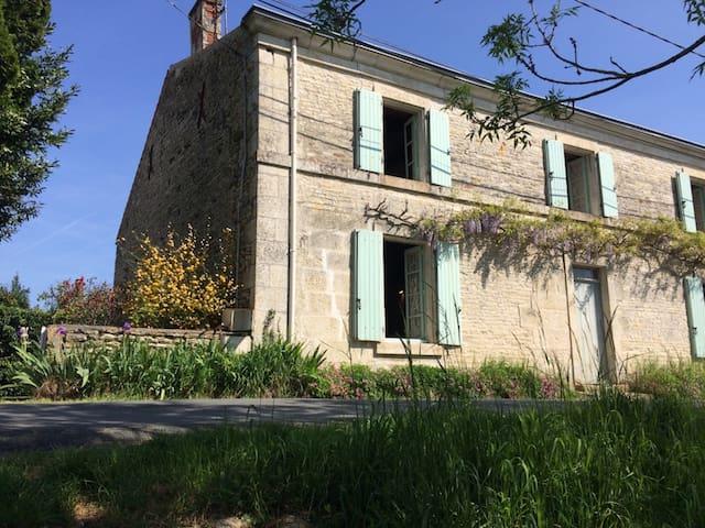 Ferme rénovée en bord de Sèvre - Damvix - House